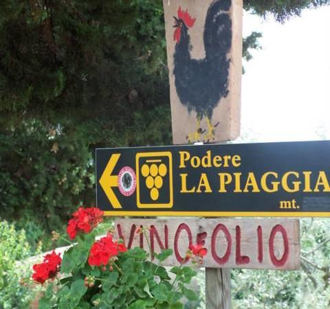 Summer in Chianti-Pesce Finto