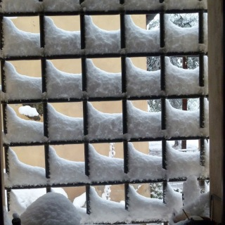 Berlingaccio and surviving the snow
