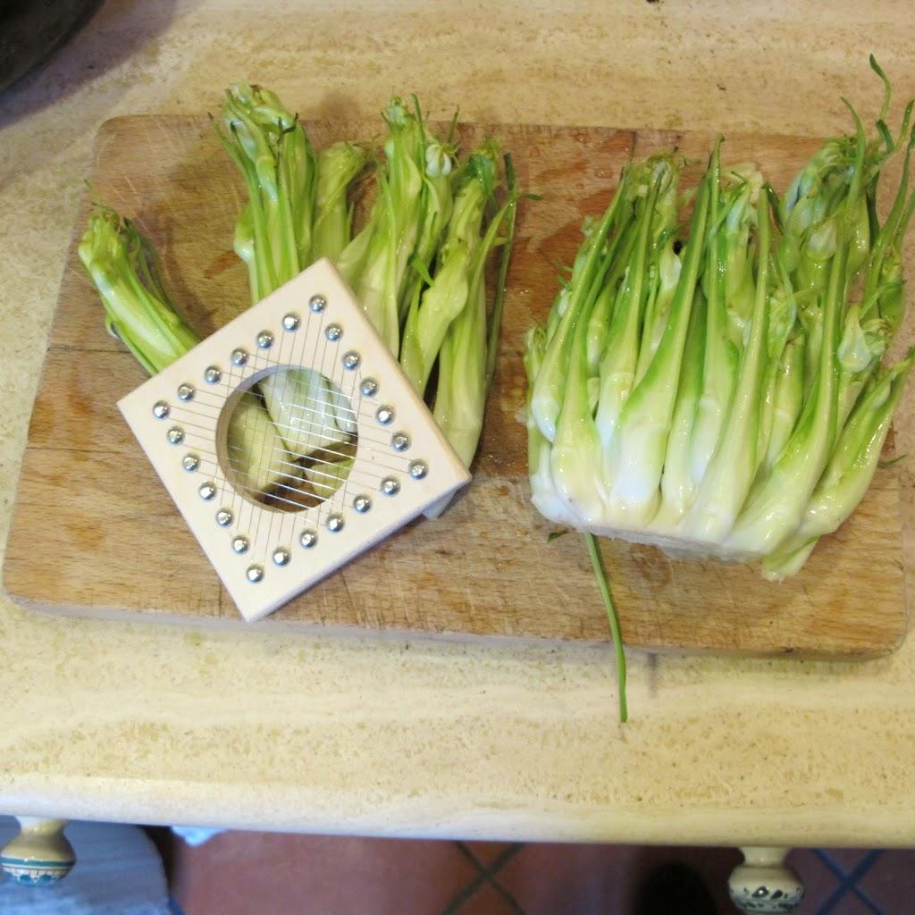 Puntarelle Salat