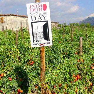 A Passion for Pomodori [San Marzano-Danicoop]