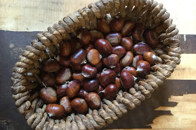 Ballotte-Stewed Tuscan Chestnuts